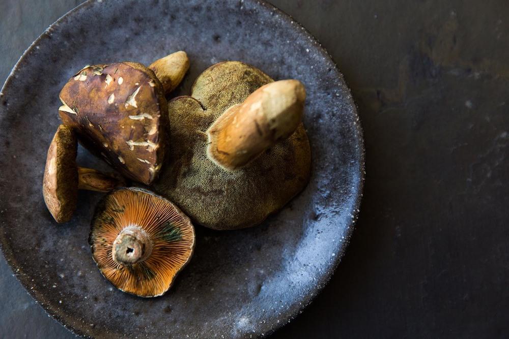 Risotto salsiccia fungi