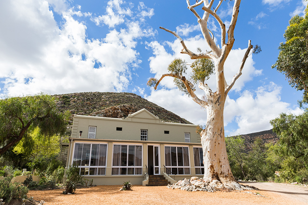 Tilney Manor at Sanbona Wildlife Reserve
