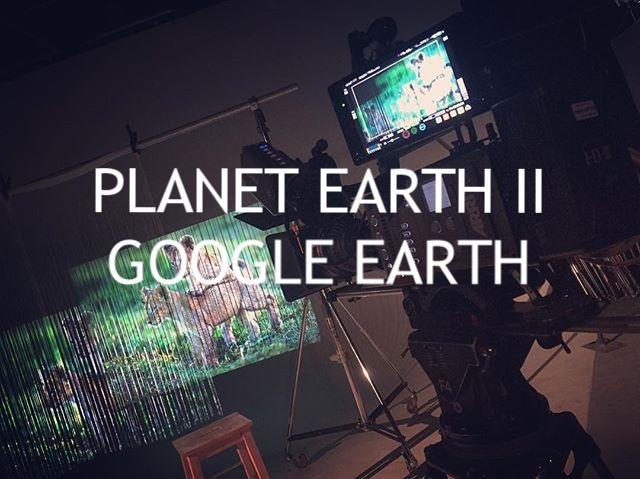 BBC Earth productions/Google