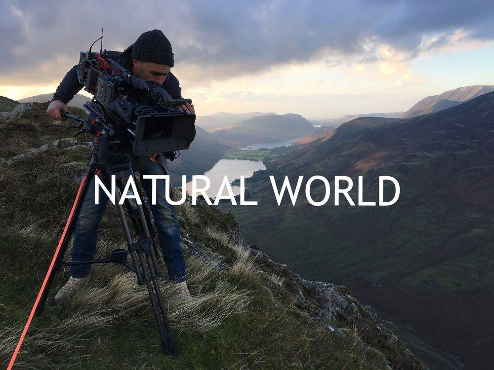BBC Natural History unit