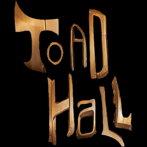 TOAD HALL MUSIC EVENTS  This initiative, currently in startup phase breaks even but with virtually no overhead to burden its financial structure. This project needs a strategic plan, an effective sales and marketing strategy, and an integrated marketing communication strategy, as well as planning of future events.