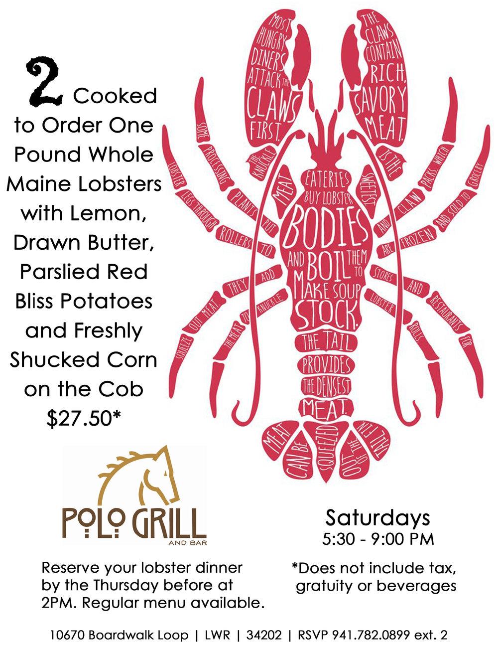 Lobster Nights.jpg