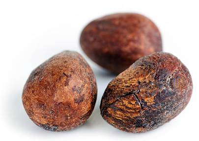 Shea Tree Fruit