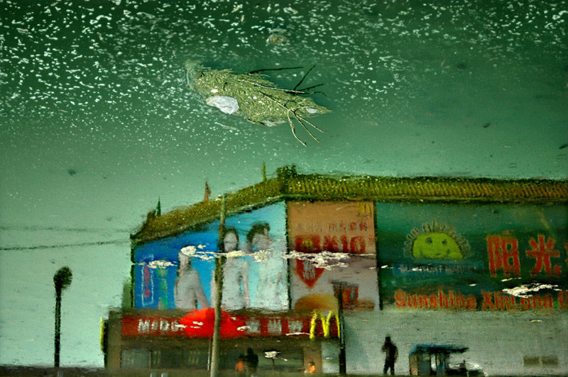 Han Bing, Urban Amber series