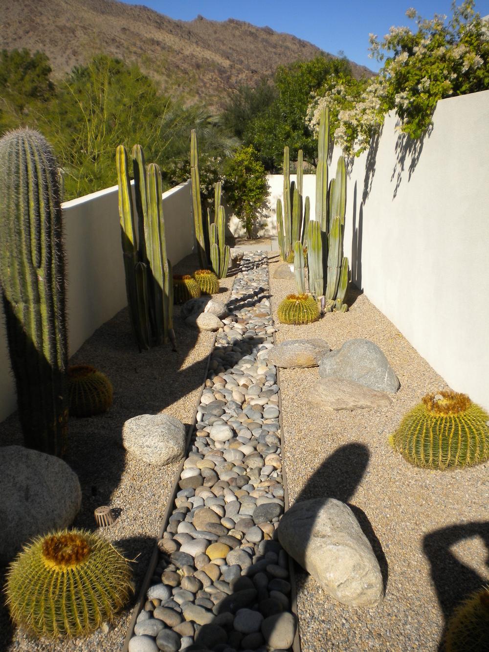 La+Mirada+Desert+Landscape.JPG
