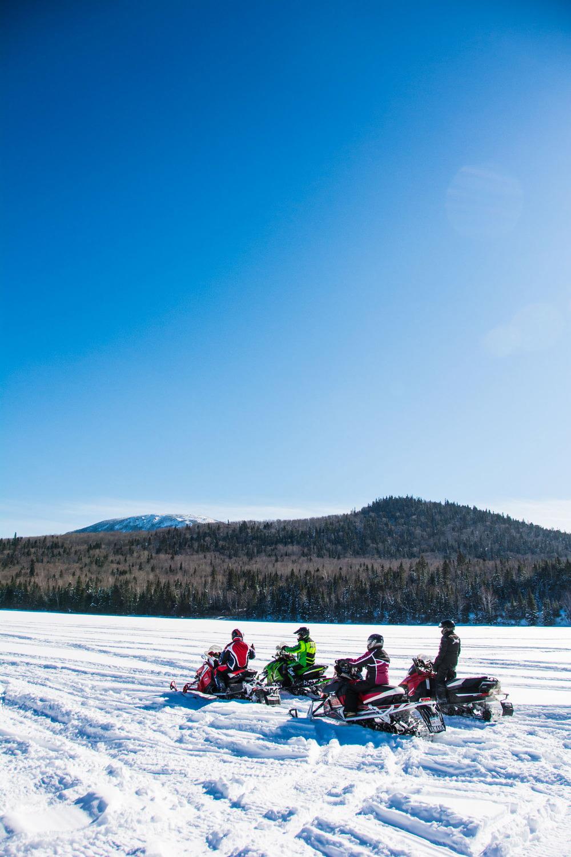 Lake Snowmobiles