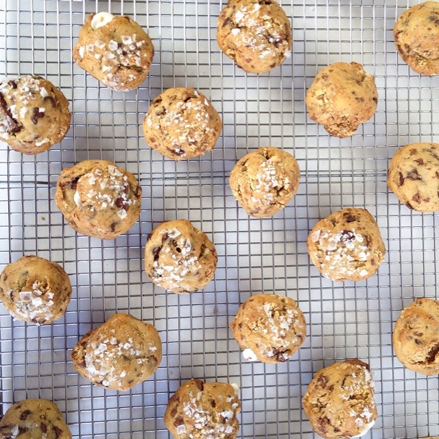 """Sneak peek at our new summer cookie! Hint: """"I haven't had anything yet, so how can I have some more of nothing?"""" #artisan #cookies #dessert #dessertporn #foodie #foodporn #handmade #iphoneonly #igers #igers_la #la #losangeles #laeats #nom #noeycakes #sweettooth #santamonica #yum (at NoeyCakes HQ)"""