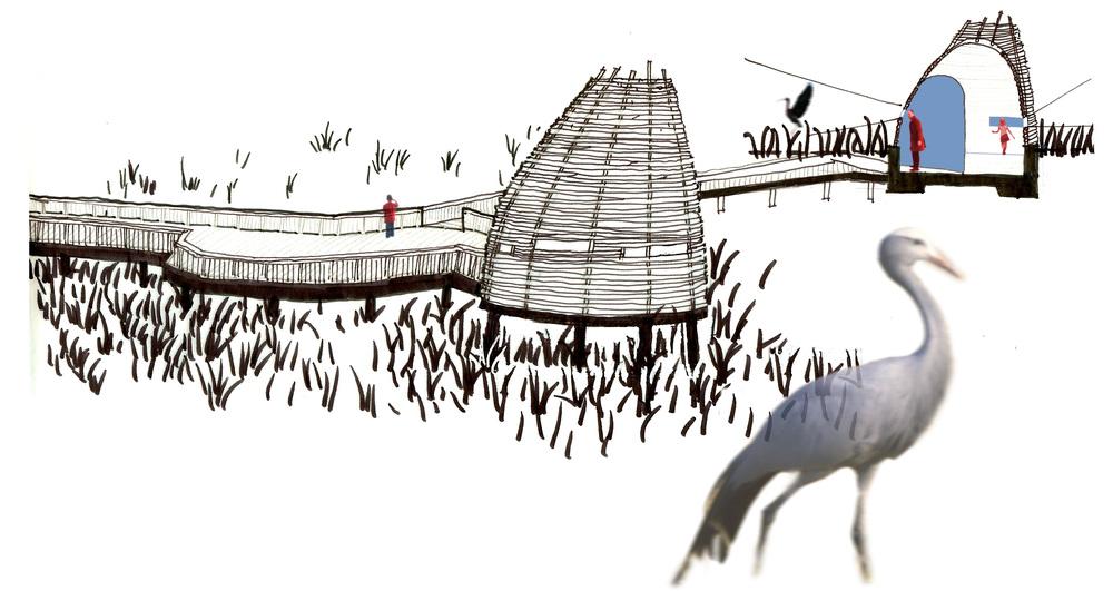 Drawings: Ian Young