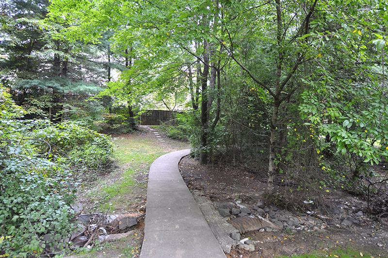 Amenity-Kings Park West Trails-_DSC9113.jpg