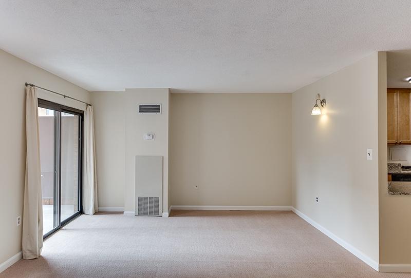 1718 P St NW 509 Washington DC-print-030-31-Living Room-4200x2844-300dpi.jpg