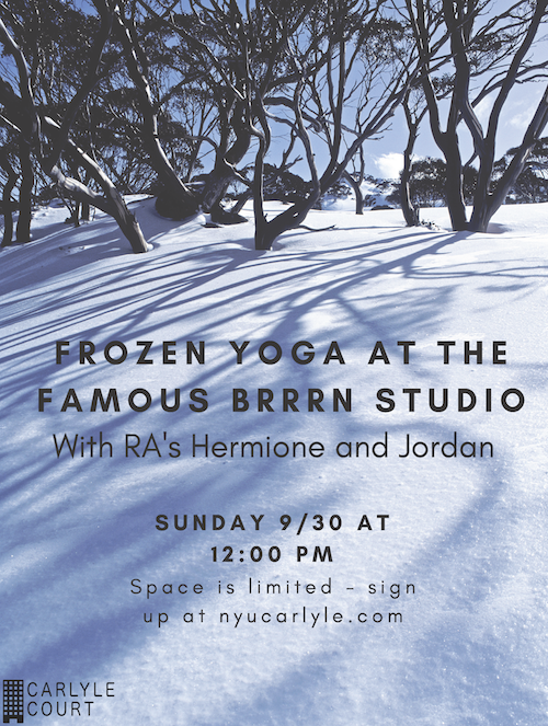 Frozen Yoga at Brrrn.png