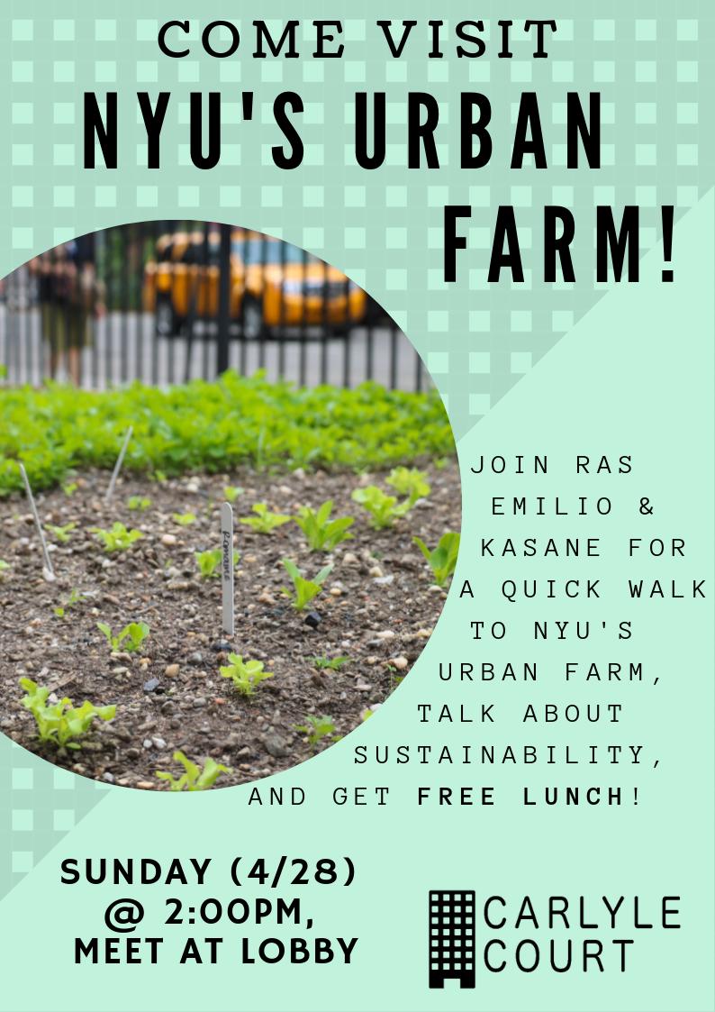 nyu urban farming (1).png