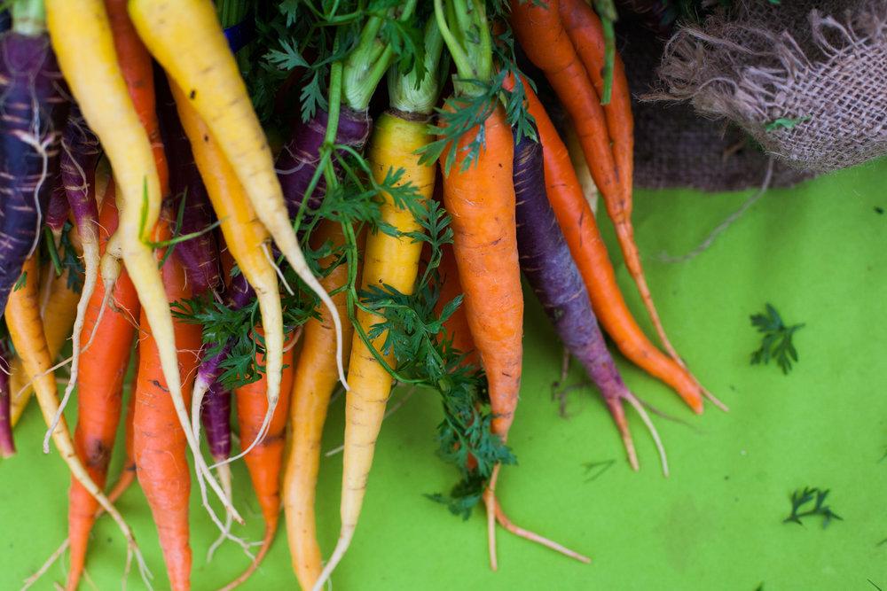 Female Farmer Project _ AudraMulkern24.jpg