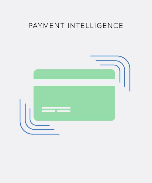 PaymentIntelligence.jpg