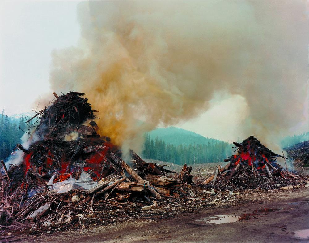 03. Cedar Burn.jpg