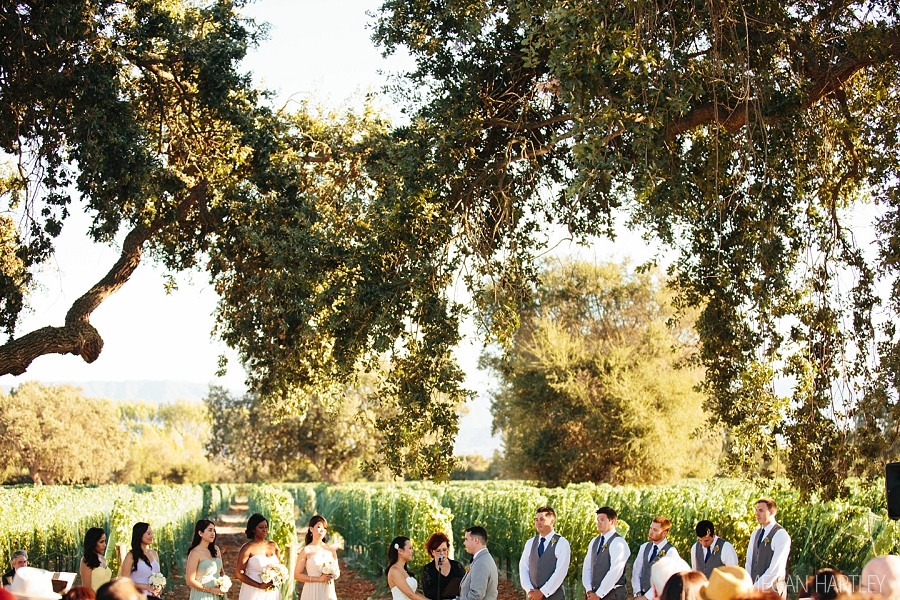 Santa Ynez Wedding Photographer Roblar Winery Wedding 00027