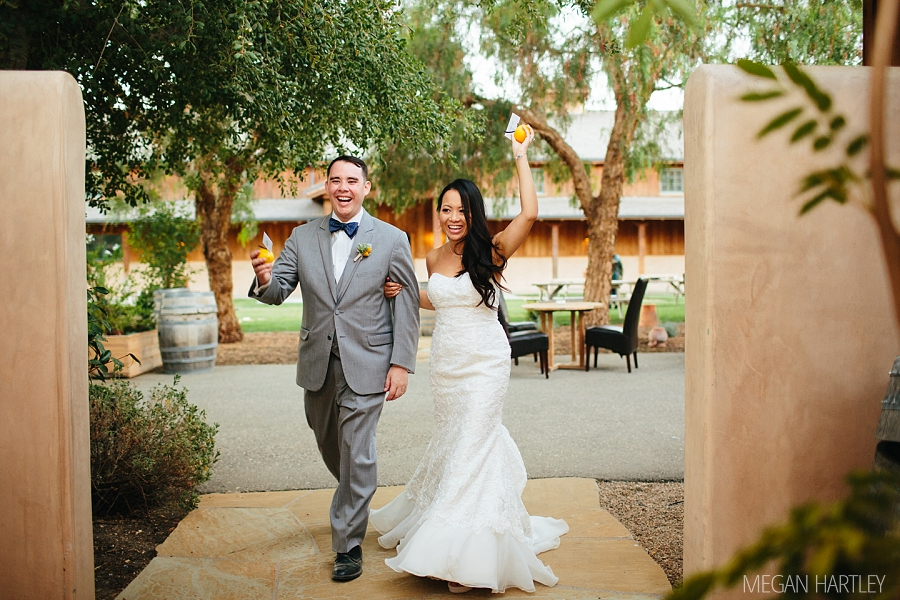 Santa Ynez Wedding Photographer Roblar Winery Wedding 00048