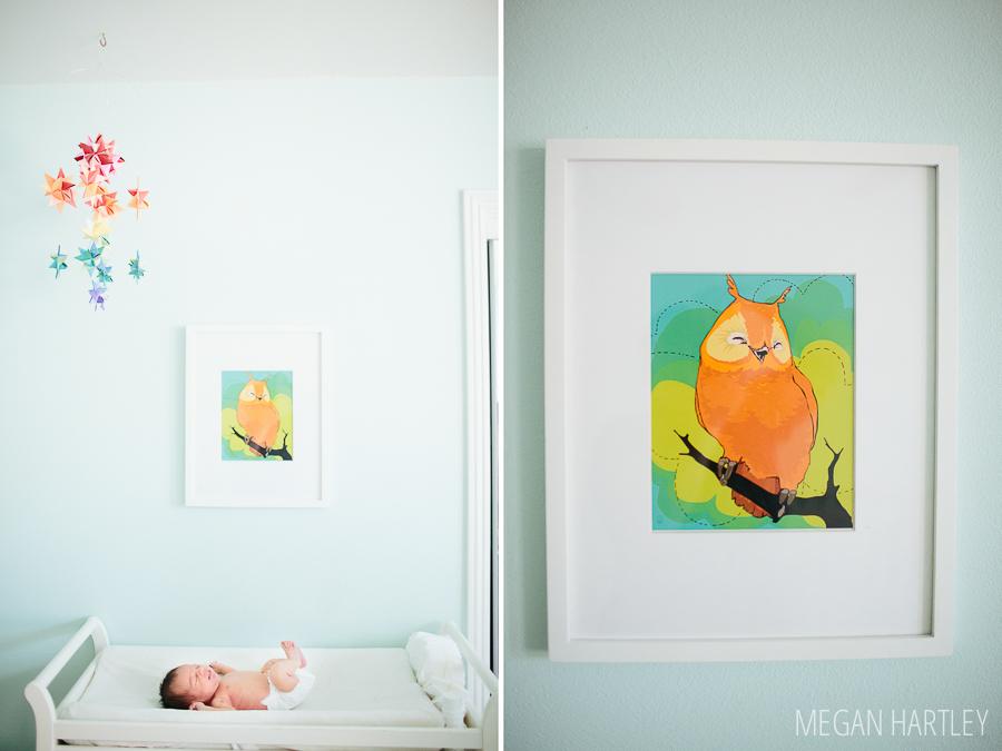Megan Hartley Photography Orange County Newborn Photographer0032