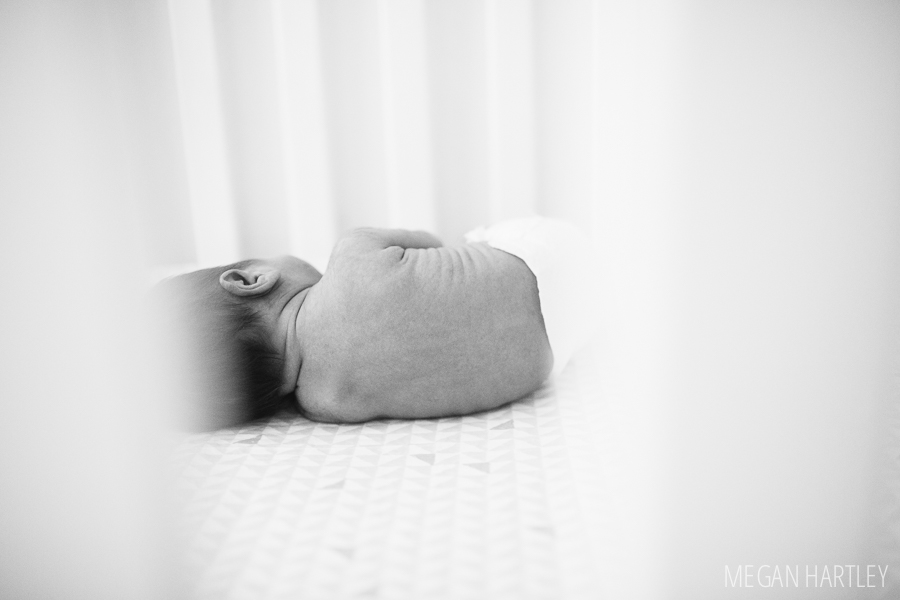 Megan Hartley Photography Orange County Newborn Photographer0035