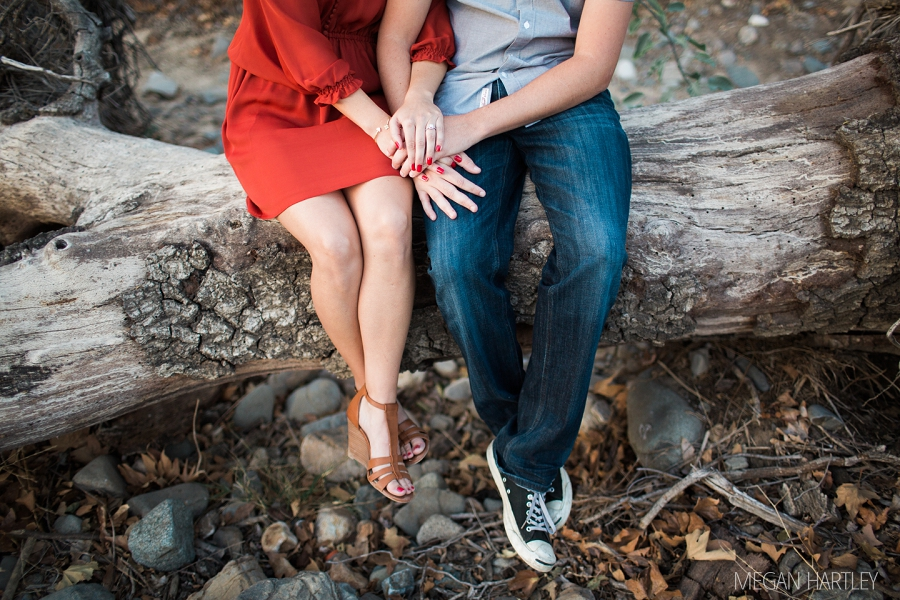 Megan Hartley Photography Orange County Engagement Photographer  00033