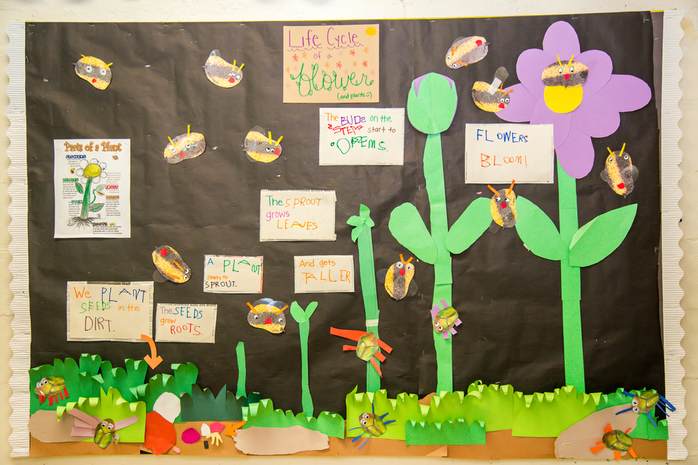 Each week the children investigate a new theme and letter of the alphabet. Artwork and projects decorate the classroom with interactive displays.