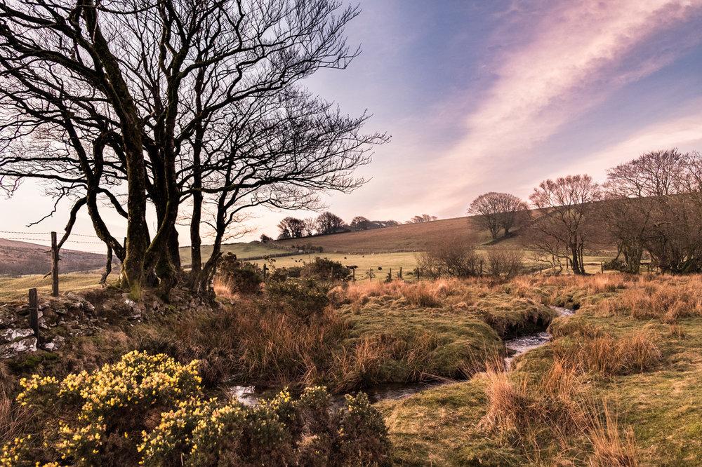 Beautiful Dartmoor