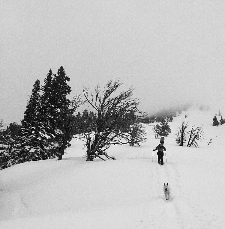 backcountry-snowboarding-jacksonhole.jpg