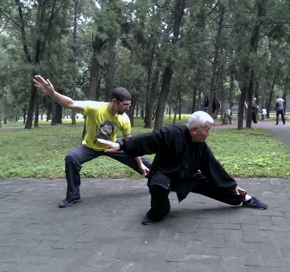 Lao Zhang Shrfu teaching  Josef Haber