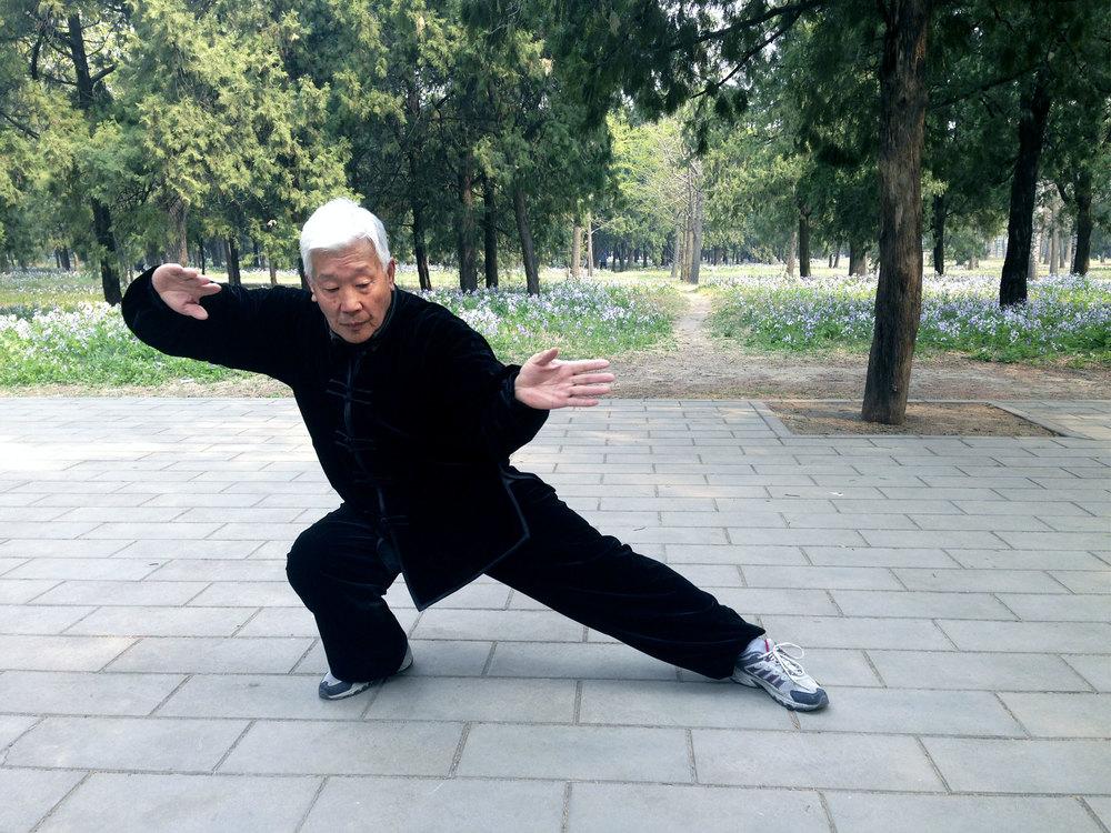 Lao Zhang Shrfu Master of Chen TaiChi, PaoChui, and DaBeiQuan