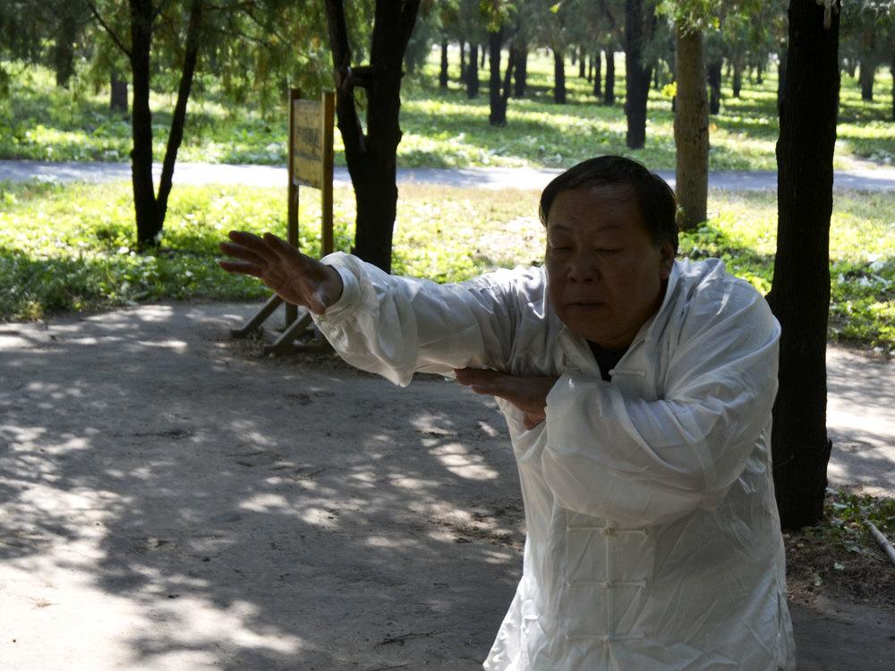 Master ZhangXueAn , 2014.
