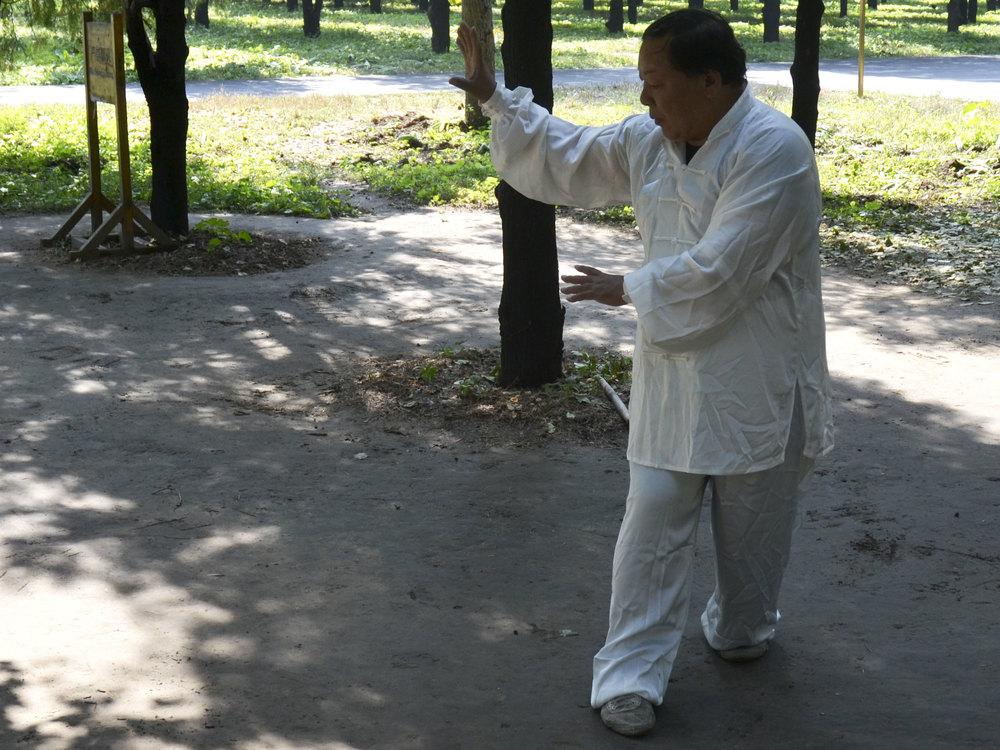 Master ZhangXueAn demonstrating Xing Yi Quan in 2014