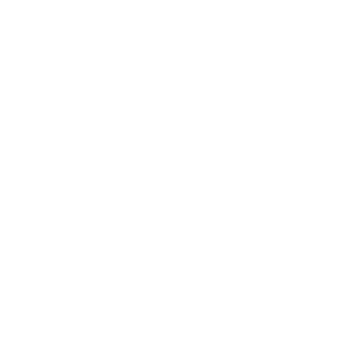 Flying Tortoise Academy