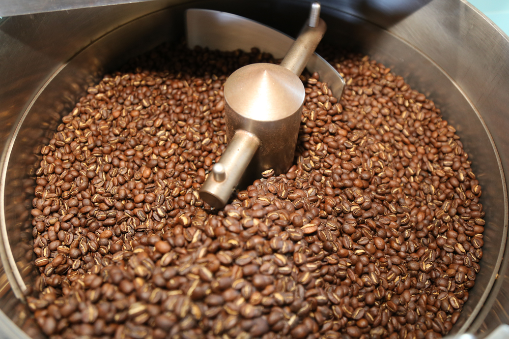 Caturra beans from Costa Rica's Don Pepe-Finca La Trinidad farm show notes of chocolate; toastiness; warm, sweet spice; candied walnut; and gentle berry.