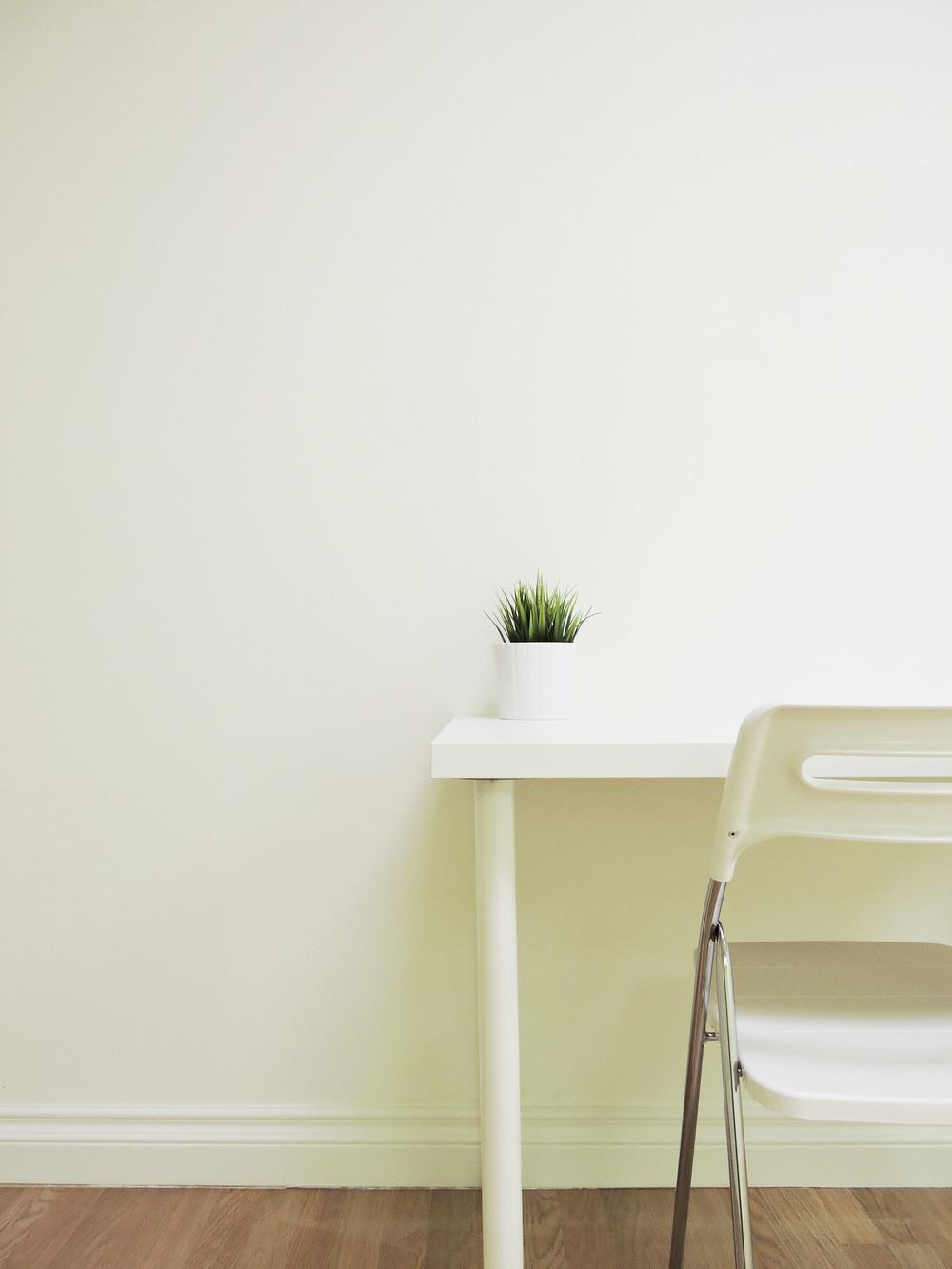119-plant.jpg