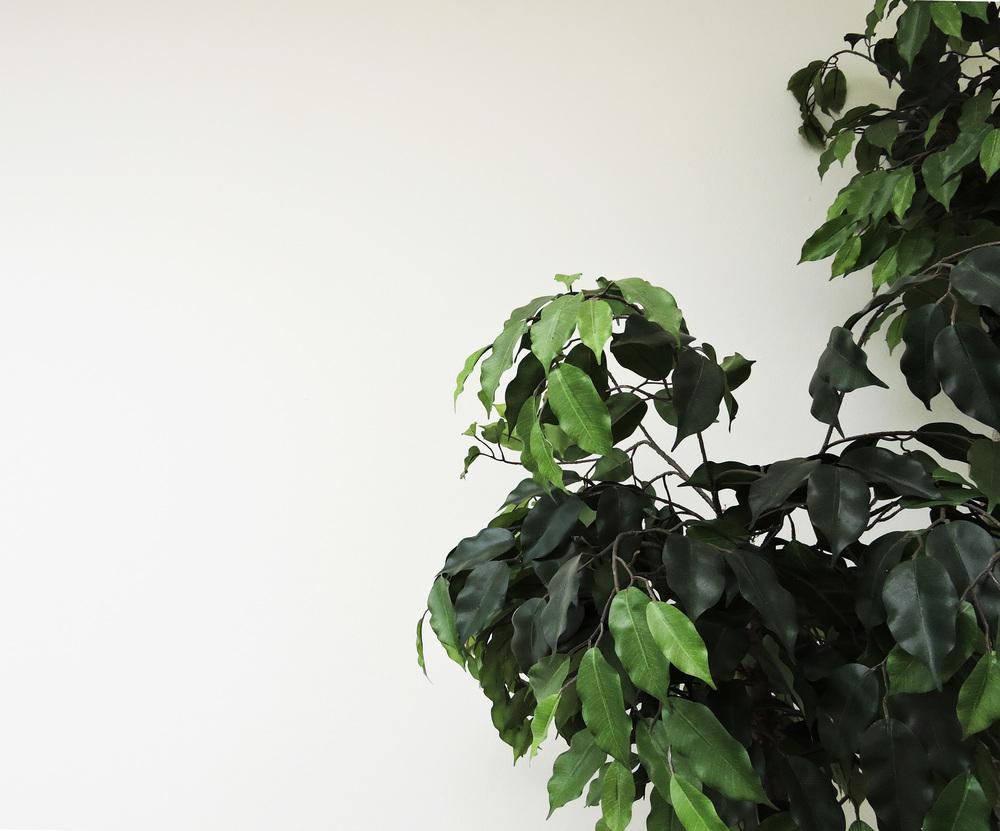 238-tree detail.jpg