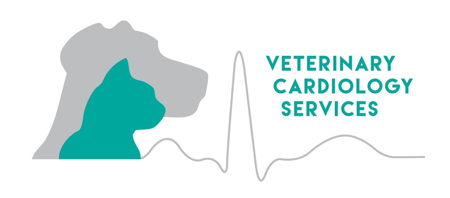 Veterinary Cardiology Services