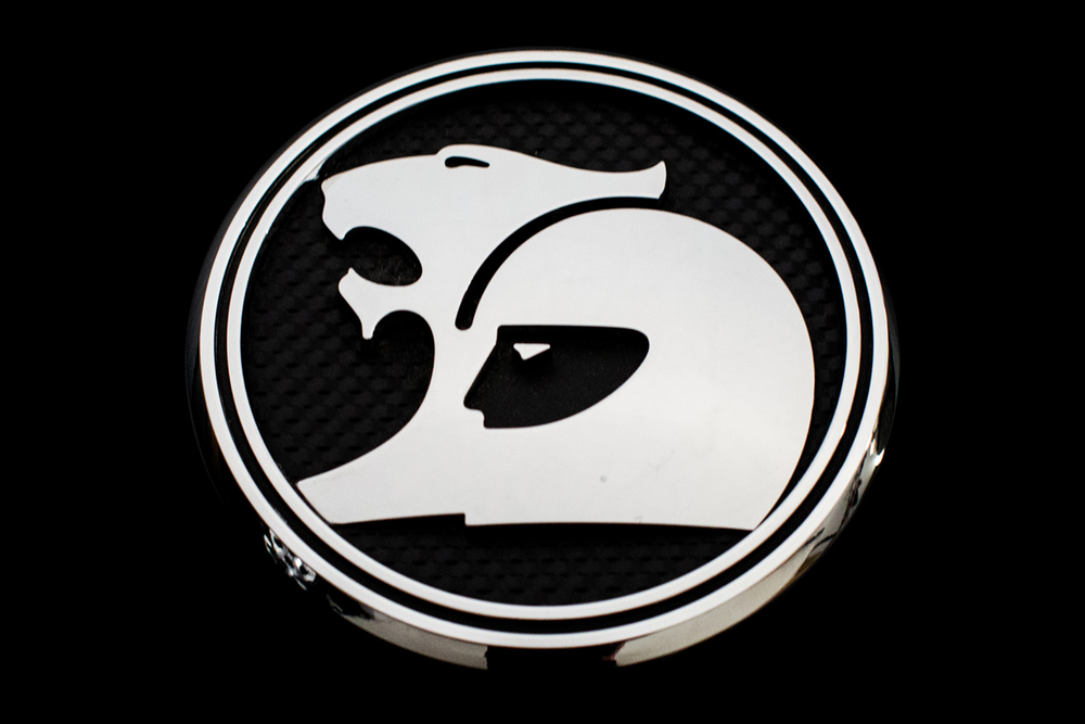 Holden Logo.jpg