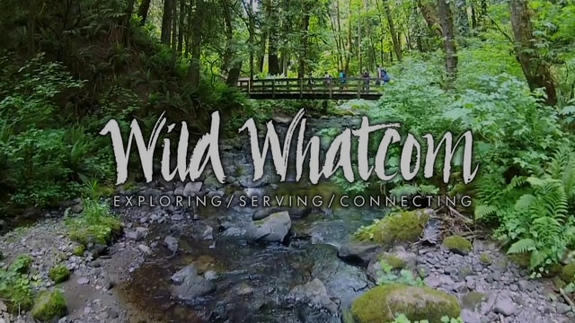 Click image for 90 seconds of fun! See why kids love Wild Whatcom.