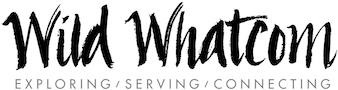 logo-90v.png