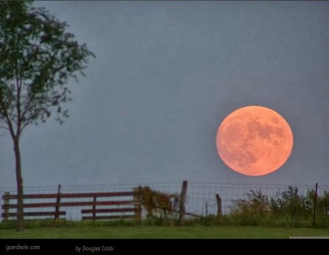 Photo: Bing Images