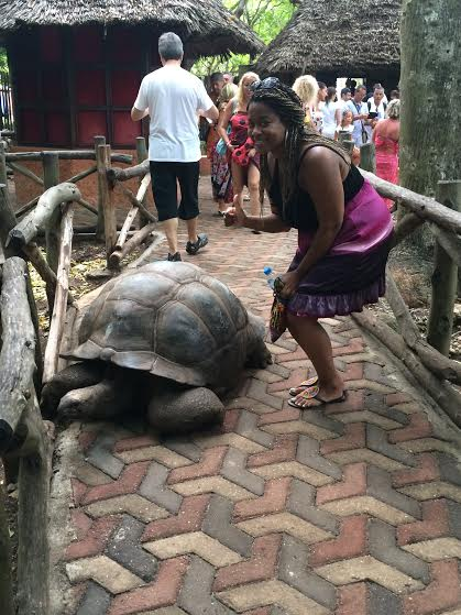 Two Aldabra Tortoises, one male and one female, were given to the Sultan of Zanzibar by Seychelles hundreds of years ago. Since then, they've reproduced and there are over 100 tortoises living on Prison Island today. The one pictured here is 101 years old.