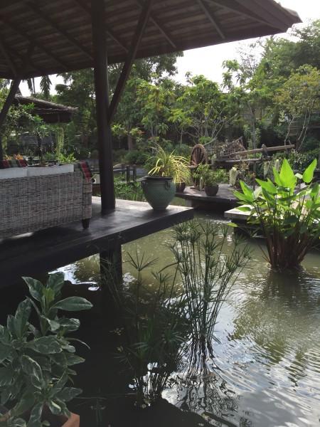 garden2-450x600.jpg