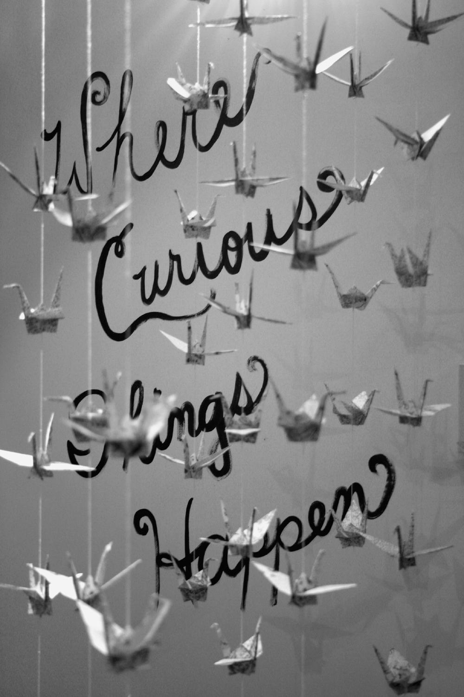6-curious-things.jpg