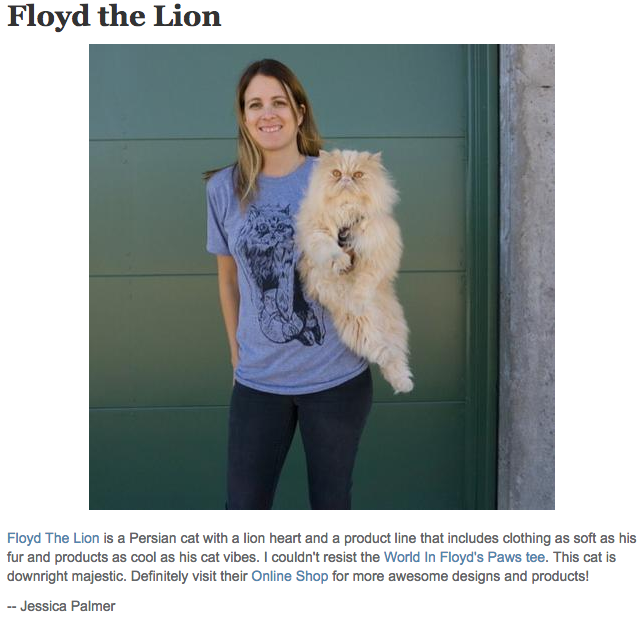 Floyd The Lion