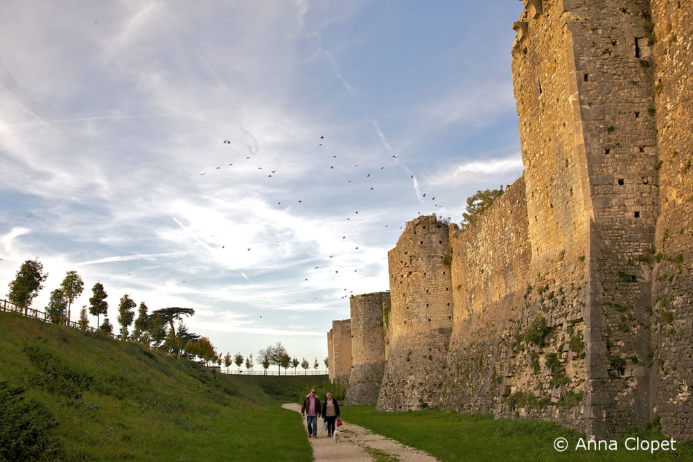 Photo_Travel_Tuition_Provins_Chateau.jpg