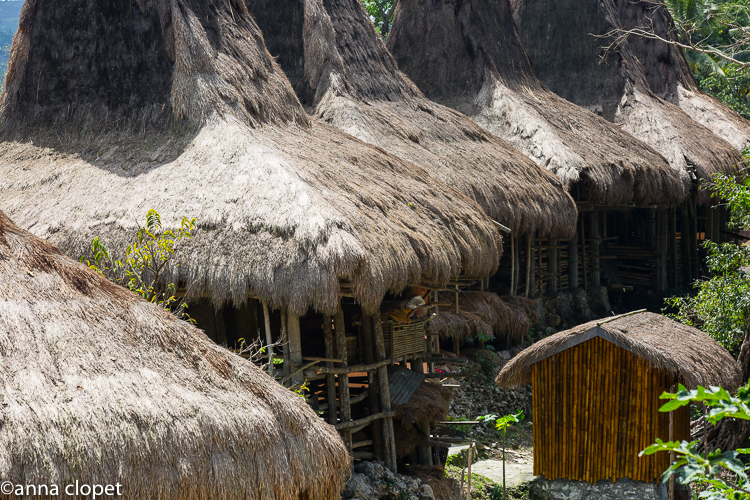 Sumba#tribal#village#roofs