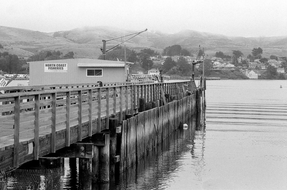 Spud Point Marina, Bodega Bay. Nikon F2A, 85mm f/1.4 Nikkor