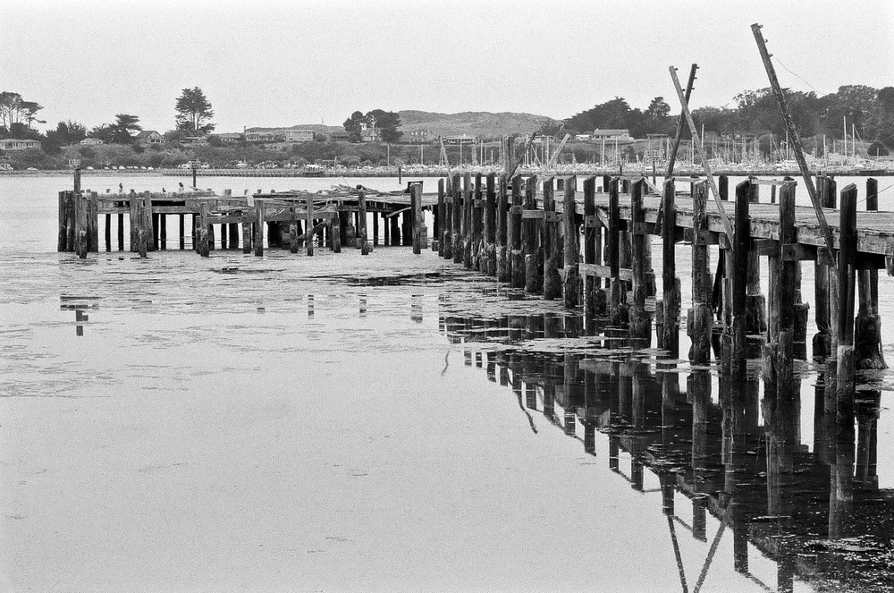 The old pier at Bodega Bay. Nikon F2A, 85mm f/1.4 Nikkor