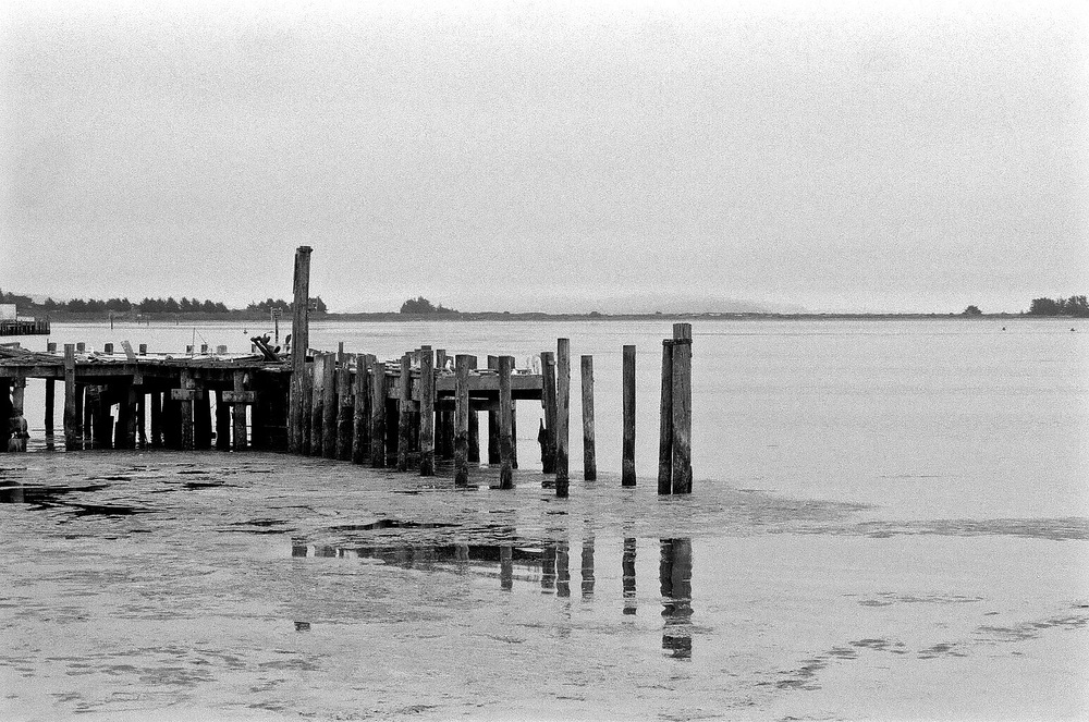 End of abandoned pier, Bodega Bay. Nikon F2A, 85mm f/1.4 Nikkor