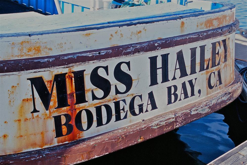 Miss Hailey, Bodega Bay CA, May 2011